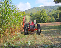 USA, Vermont: Ausschnitt-Stoff-Vermont-Mais Lizenzfreie Stockfotografie