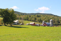 USA, Vermont: Little Dairy Farm. This farm with farmhouse (left), barns and silos is located in West Arlington; photo taken in mid September; foliage with autumn Stock Photography