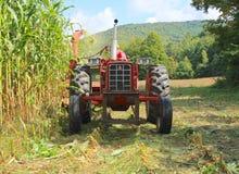 USA Vermont: Skörda högväxt Vermont havre Arkivfoton