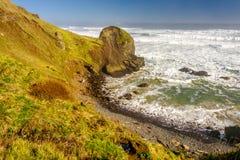 USA wybrzeże pacyfiku krajobraz, Oregon Fotografia Stock