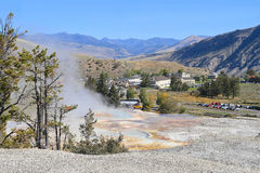 USA Wyoming: Mammoth Hot Springs och by Arkivbild