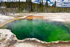 USA - Yellowstone NP arkivfoton