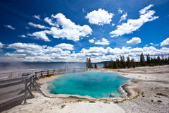 USA - Yellowstone NP Royaltyfri Fotografi