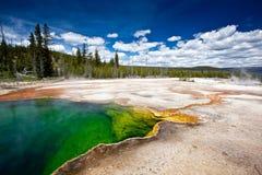 USA - Yellowstone NP royaltyfri foto