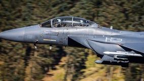 USAF γραφείων πιλότων F15 Στοκ Φωτογραφία