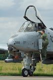 USAF A10 pilot Royalty Free Stock Photo