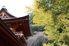 usage spécial d'Automne-feuillage, érables avec le temple au Japon images libres de droits