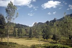 Usambara Mountains, Tanzania Royalty Free Stock Image