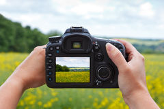 Usando uma câmera do dslr para tomar uma foto Imagens de Stock Royalty Free