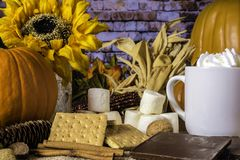 Usanze del ` di S e di Autumn Sunflowers Pumpkins immagini stock libere da diritti