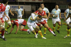 USAP contro Biarritz - rugby francese del principale 14 Fotografie Stock Libere da Diritti