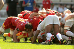 USAP Perpignan players scrumming Stock Photography