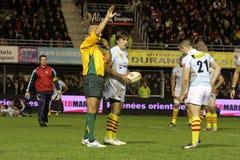 USAP versus Biarritz - Frans Hoogste Rugby 14 Stock Afbeeldingen