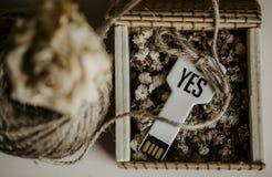 Usb пользуется ключом память плоти в деревянной коробке стоковая фотография