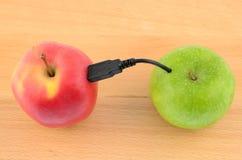 usb яблока Стоковые Фото