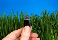 USB-Antrieb in einer Hand Stockfoto