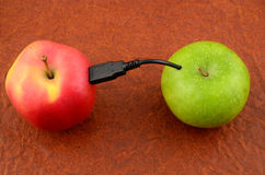 Usb apple. Vitamin download - Usb wired apples Stock Image