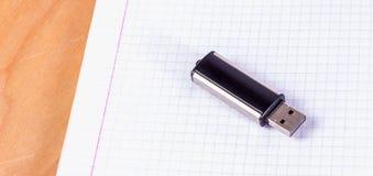 USB-Blitz-Antrieb auf einem Blatt in einem Käfig Lizenzfreies Stockfoto