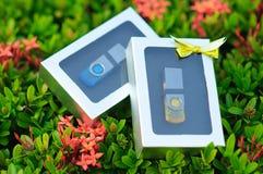 USB-Blitz-Antriebe in gesetzten Kästen eines Geschenks Lizenzfreies Stockbild