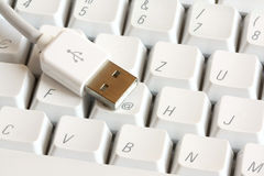 USB connector on a keyboard Stock Photography