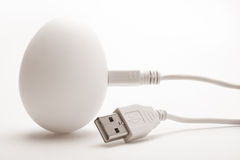 USB eieren 2 stock fotografie