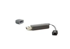 USB flash card . Isolated. Stock Photography