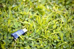 USB flash drive on grass. Royalty Free Stock Images