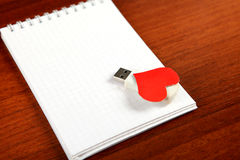 USB Flash Drive on the Note Pad Royalty Free Stock Photo