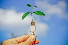 Usb green it Royalty Free Stock Photos