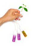 Usb green it. Hand holding a usb cable with a small plant royalty free stock photos