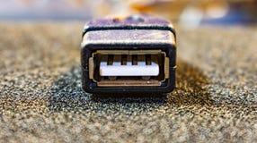 USB kontaktdon royaltyfri bild