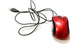Usb mysz komputer Obraz Royalty Free