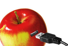 USB port and apple Royalty Free Stock Image