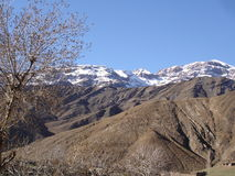 Usbekistan, Chimgan-Region, Frühling 2006 lizenzfreie stockfotos