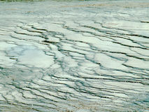 Uscita dal geyser, parco nazionale di Yellowstone Fotografia Stock Libera da Diritti