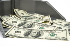 USD IN TRASH BIN. On white Royalty Free Stock Photos