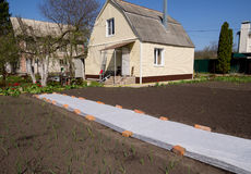 Use of covering material to protect the soil in the garden area. Voronezh, Russia - April 30, 2017: Use of covering material to protect the soil in the garden Stock Image
