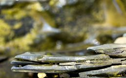 Use of natural stones in the decorated garden, Japanese garden of stones. Close up stock photography