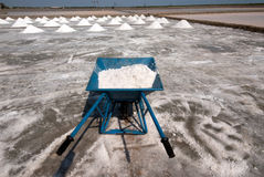 Use salt trolley. Salt trolley for carrying salt at the salt farm in Samutsongkhram Province,Thailand.Salt production is one of the main industries in Thailand royalty free stock photography