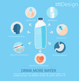 Use of water for human health. Vector. Stock Photography