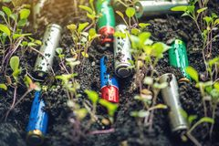 Used alkaline batteries lie in the soil where plants grow. Concept of environmental pollution with toxic household waste. Used alkaline batteries lie in the soil stock image