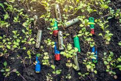Used alkaline batteries lie in the soil where plants grow. Concept of environmental pollution with toxic household waste. Used alkaline batteries lie in the soil stock photography