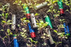 Used alkaline batteries lie in the soil where plants grow. Concept of environmental pollution with toxic household waste. Used alkaline batteries lie in the soil royalty free stock photography