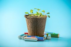 Used alkaline batteries lie with sprouted green plants. Concept of environmental pollution with toxic household waste. Used alkaline batteries lie with sprouted stock image