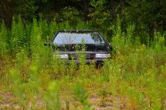 Car abandoned in field Royalty Free Stock Image