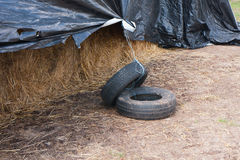 Used car tires Royalty Free Stock Image