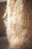 Used Cat Scratching Post stock photo