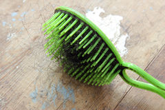 Used comb with fallen hair Stock Photo