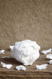 Used paper tissue Royalty Free Stock Photography