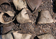 Used peat pots on dirt Stock Photography